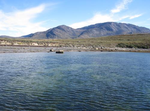 imagen de Costas de Groenlandia donde se han estudiado las praderas submarinas de Zostera marina, que se aprecian como manchas oscuras./Foto: Núria Marbà