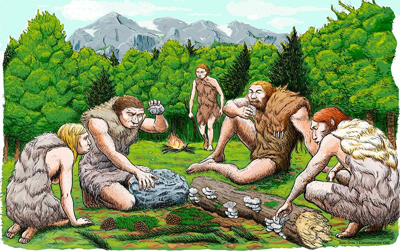 imagen de Cinco neandertales de El Sidrón degustan setas, piñones y musgo. Abel Grau / CSIC Comunicación