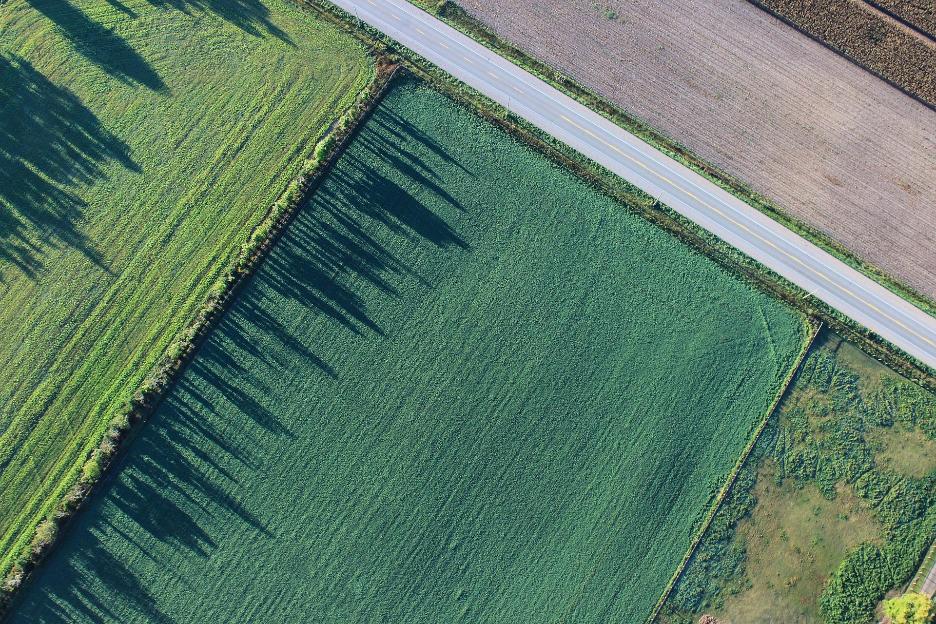 imagen de Paisaje agrícola.