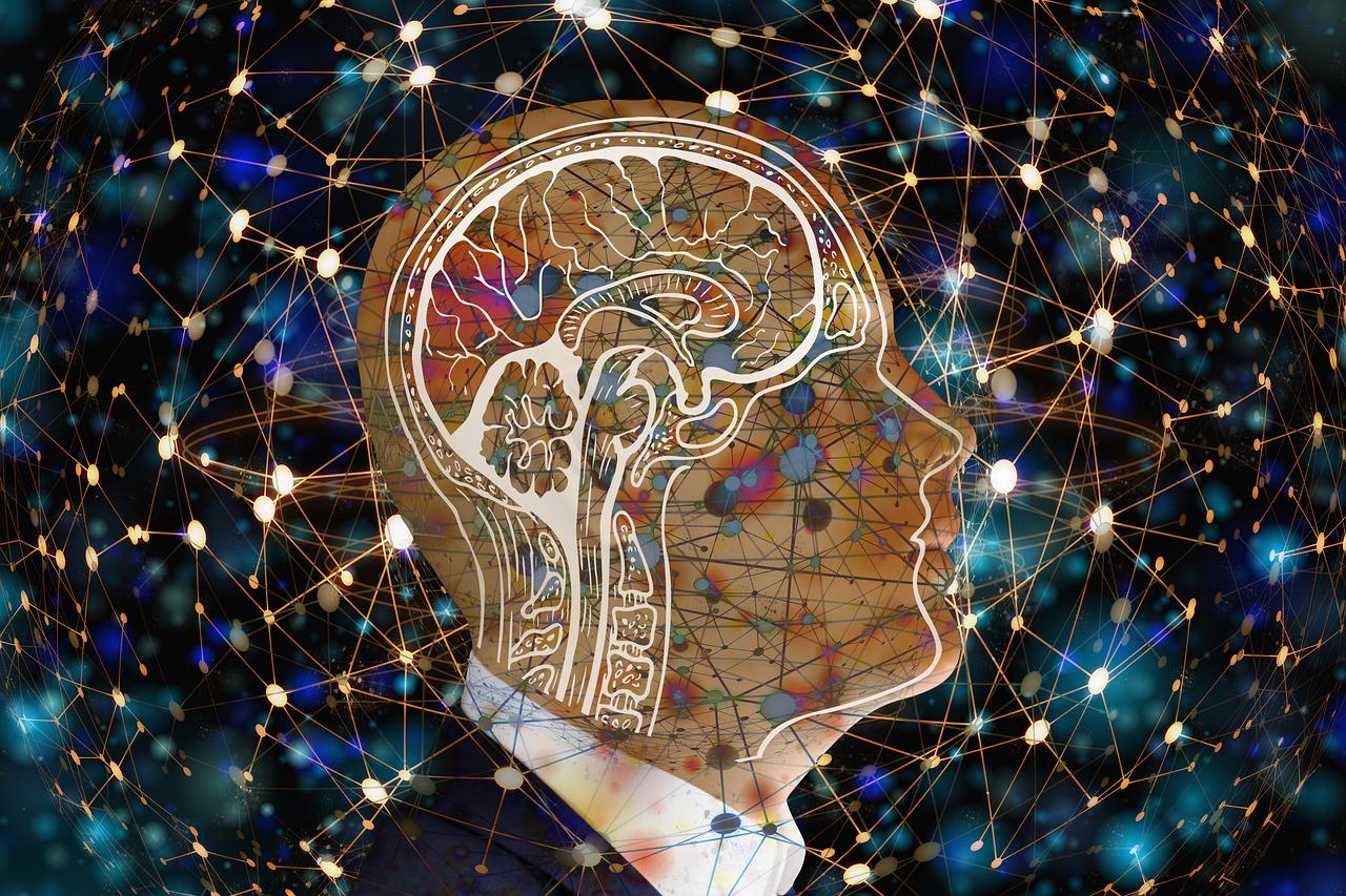 Los cambios iniciados por la activación neuronal son más complejos y actúan a más niveles de lo que se pensaba hasta ahora./ PIXABAY