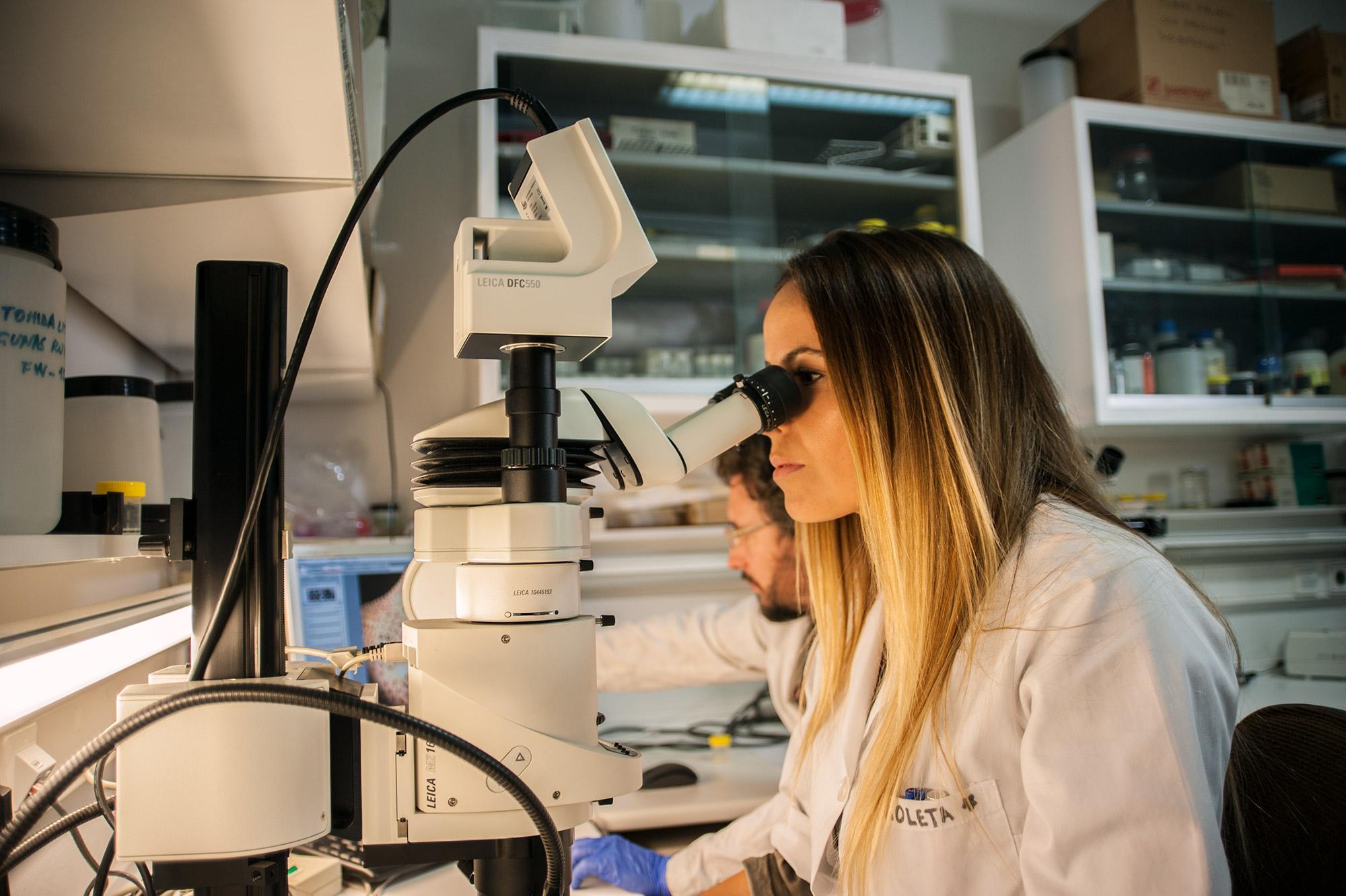 Ciencia en Igualdad