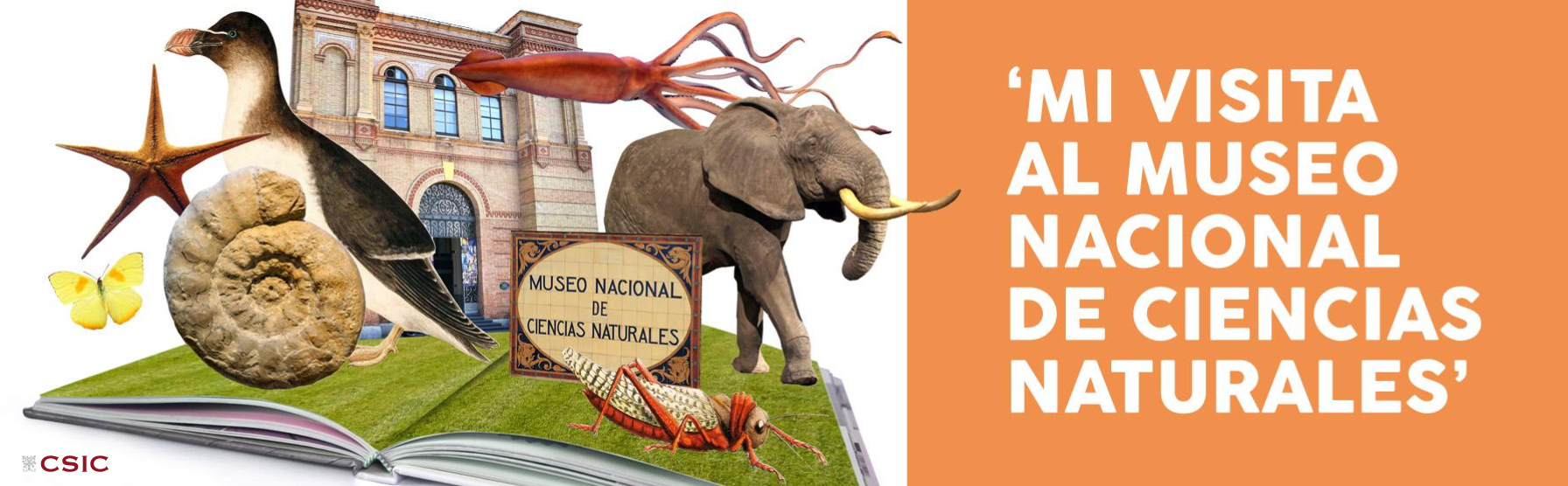 Concurso 'Mi visita al Museo Nacional de Ciencias Naturales'