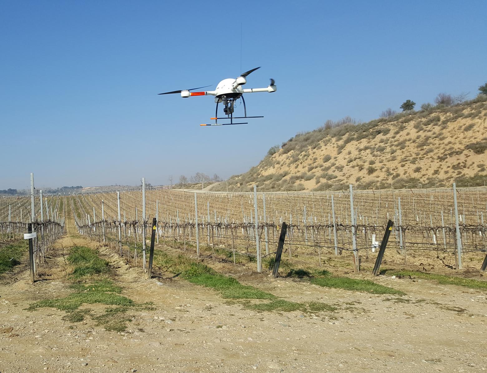 imagen de El nuevo método implica la obtención de imágenes de alta resolución a través de drones./ IAS-CSIC