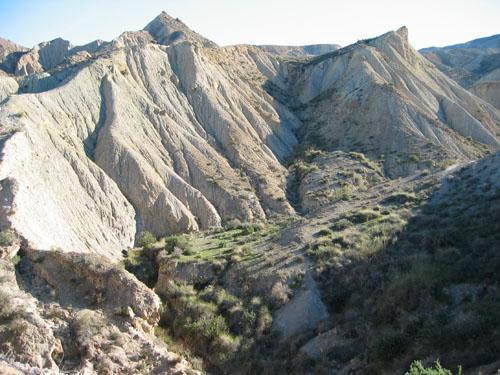 imagen de Desierto de Tabernas, en Almería. / EEZA-CSIC