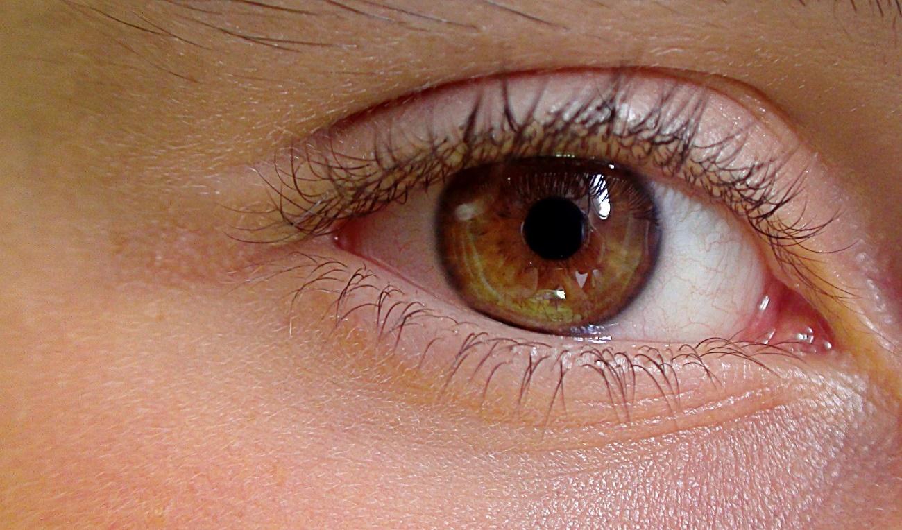 imagen de Una lente acomodativa desarrollada por investigadores del CSIC imita al cristalino. / Pixabay
