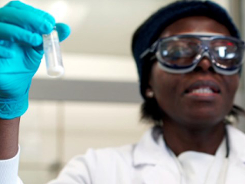 imagen de 'Ellas investigan' está dirigido a científicas que lideran equipos de investigación en África. / FMXA