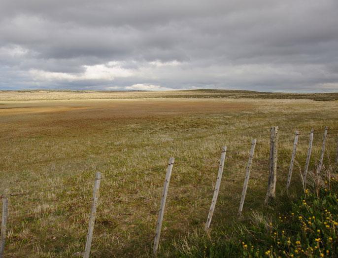 imagen de Cercado de un prado / Comunicación CSIC