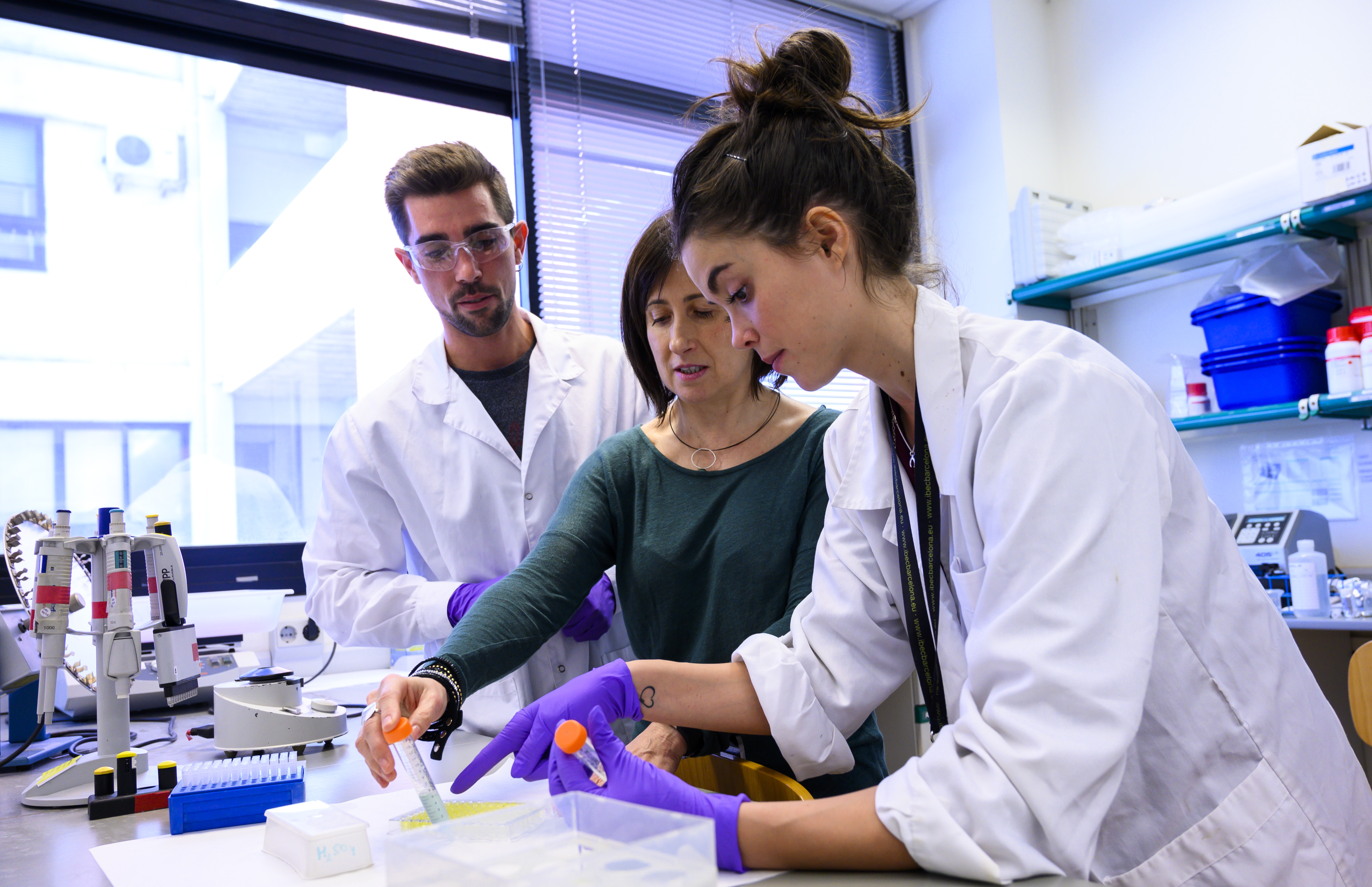 imagen de Jóvenes investigadores trabajando en el laboratorio./ CÉSAR HERNÁNDEZ/ CSIC