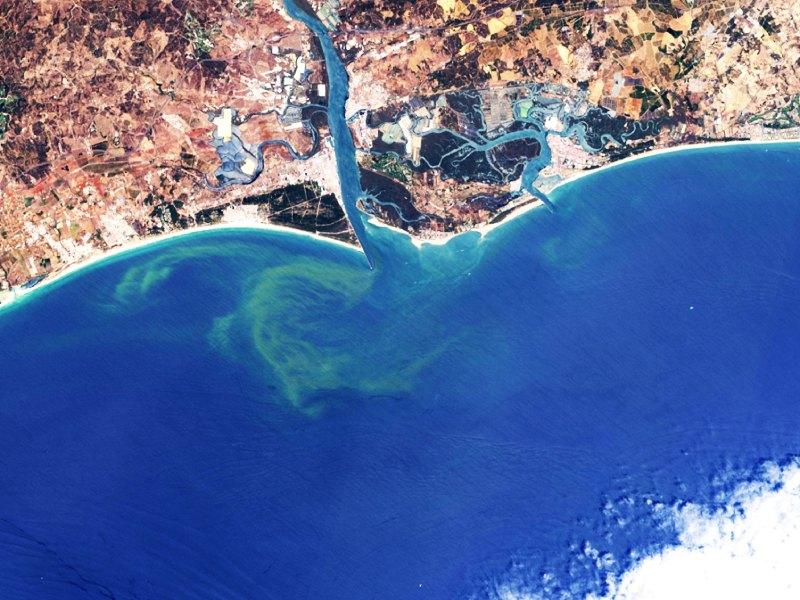 imagen de Imagen captada por el Sentinel-2 en la que se aprecia la presencia de algas en el Golfo de Cádiz. / ESA