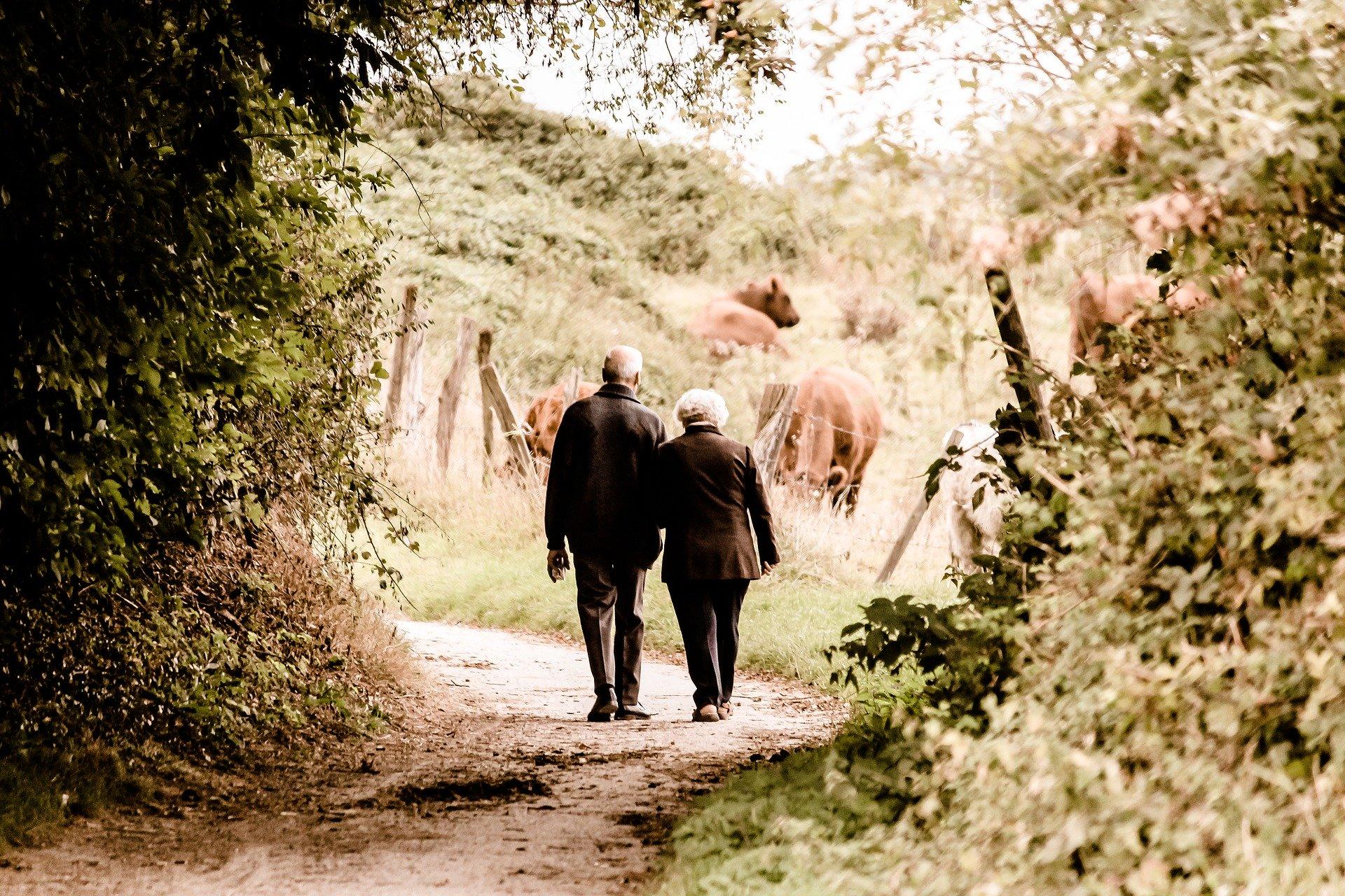 imagen de La actividad diaria mejora la evolución de los pacientes con discapacidad crónica en la vejez. / Pixabay