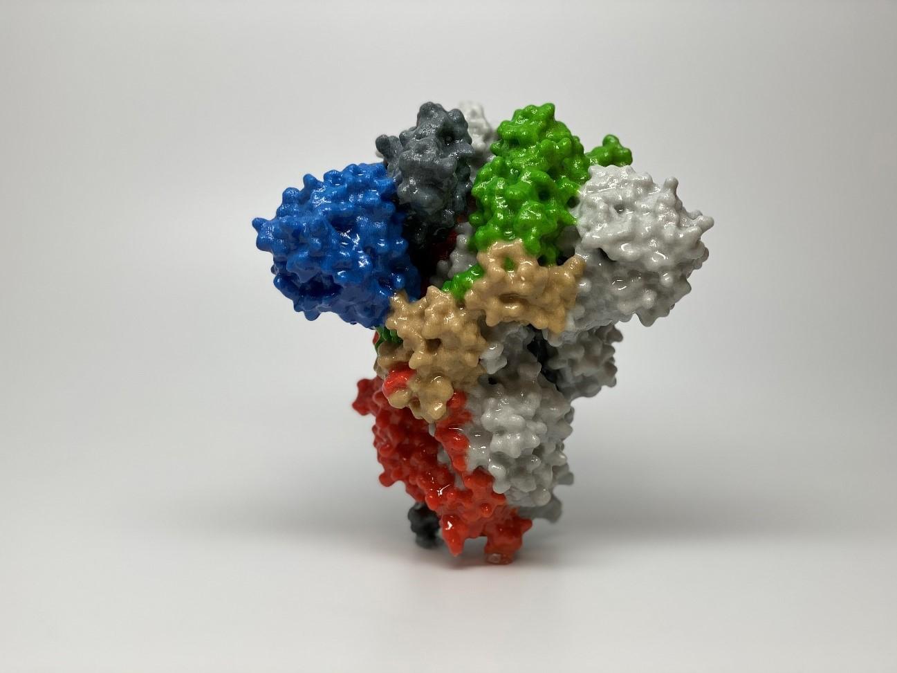 proteina_spike
