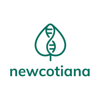 Newcotiana