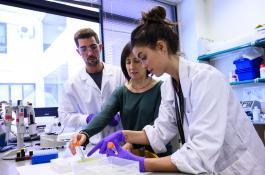 Jóvenes investigadores trabajando en el laboratorio./ CÉSAR HERNÁNDEZ/ CSIC