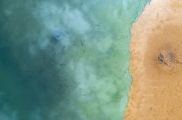Los sedimentos marinos desempeñan un papel clave en los ecosistemas./ PIXABAY