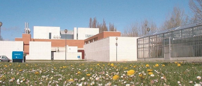 INSTITUTO DE AGROBIOTECNOLOGIA