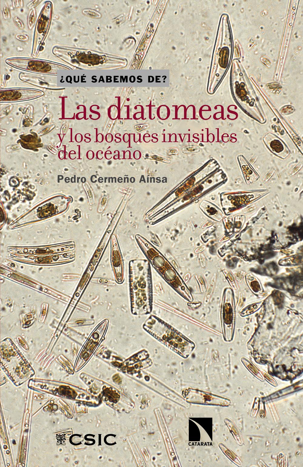 Cubierta diatomeas