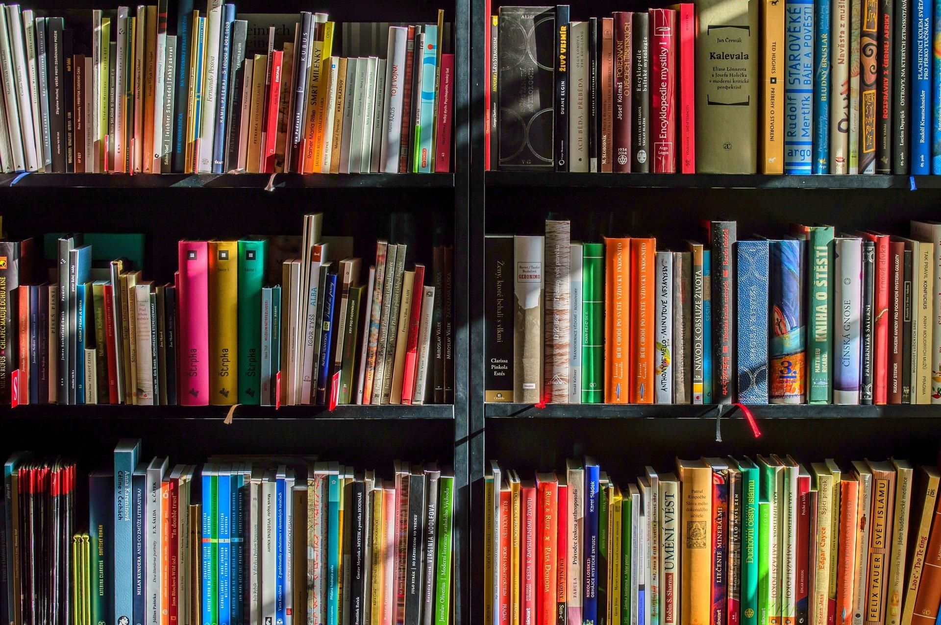 imagen de Recomendaciones de divulgación para el Día del Libro de 2021. / Pixabay