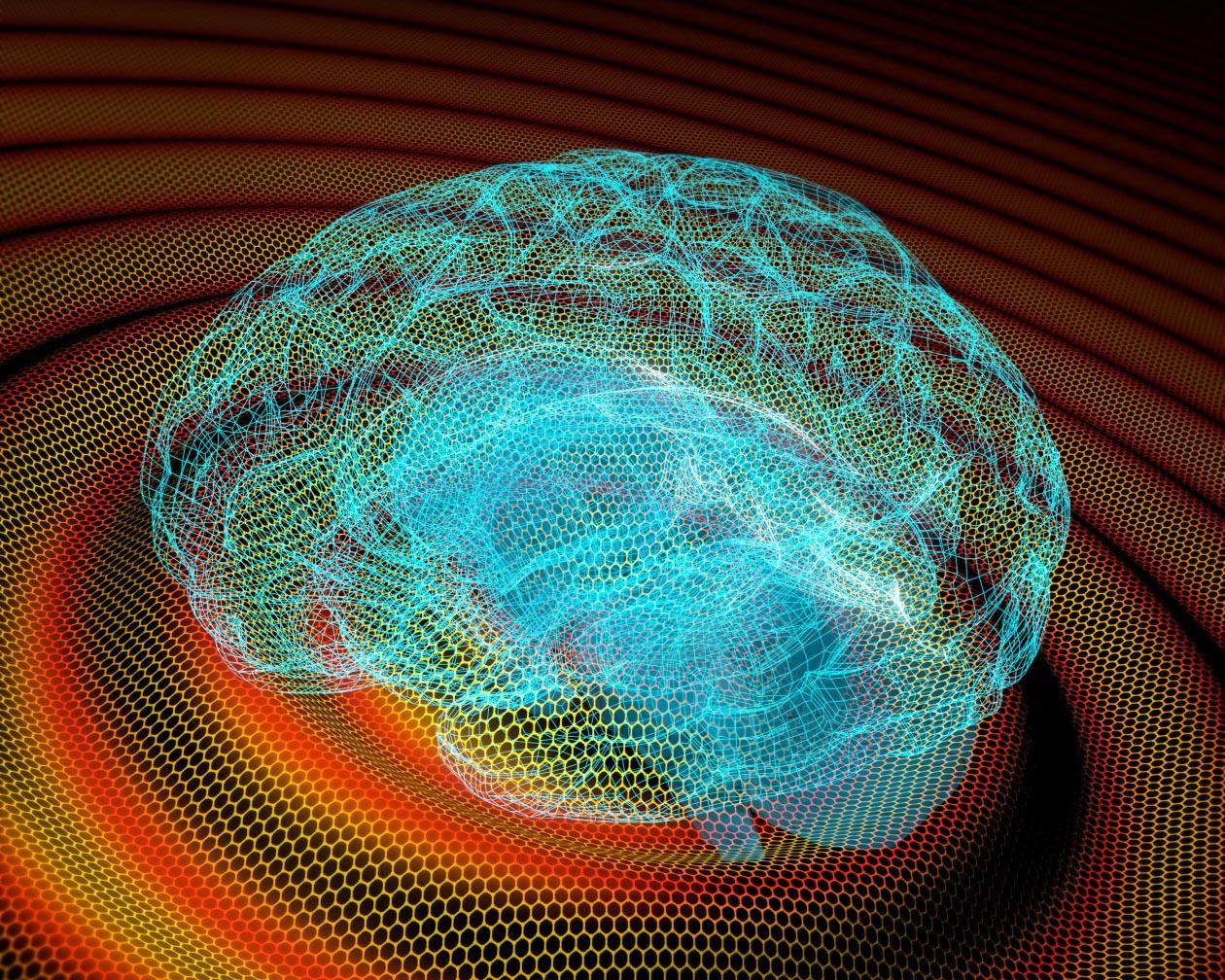 imagen de La empresa Inbrain desarrolla implantes cerebrales basados en grafeno. / ICN2/IMB