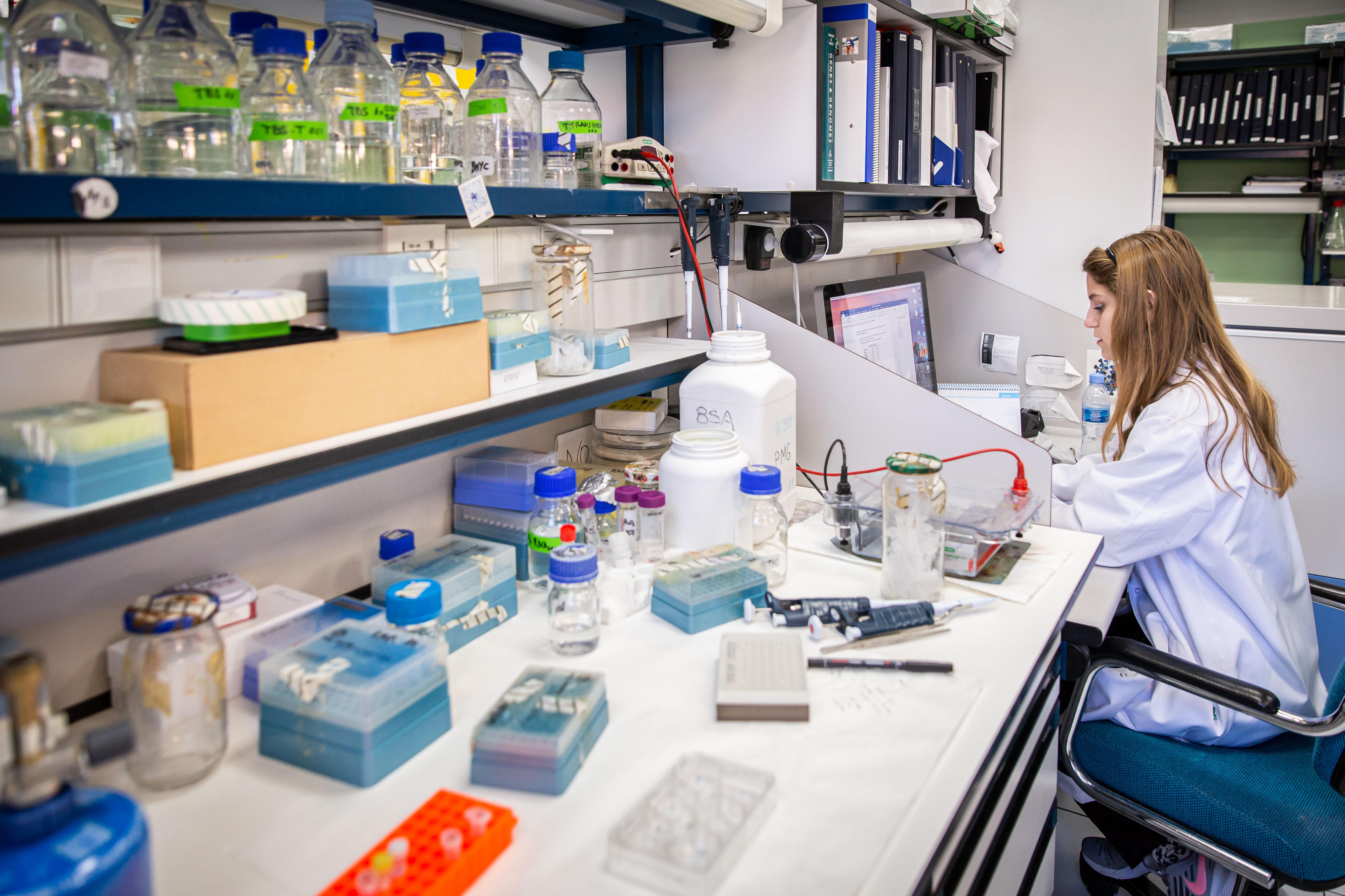 imagen de Laboratorio de coronavirus del CNB-CSIC. / Agencia SINC