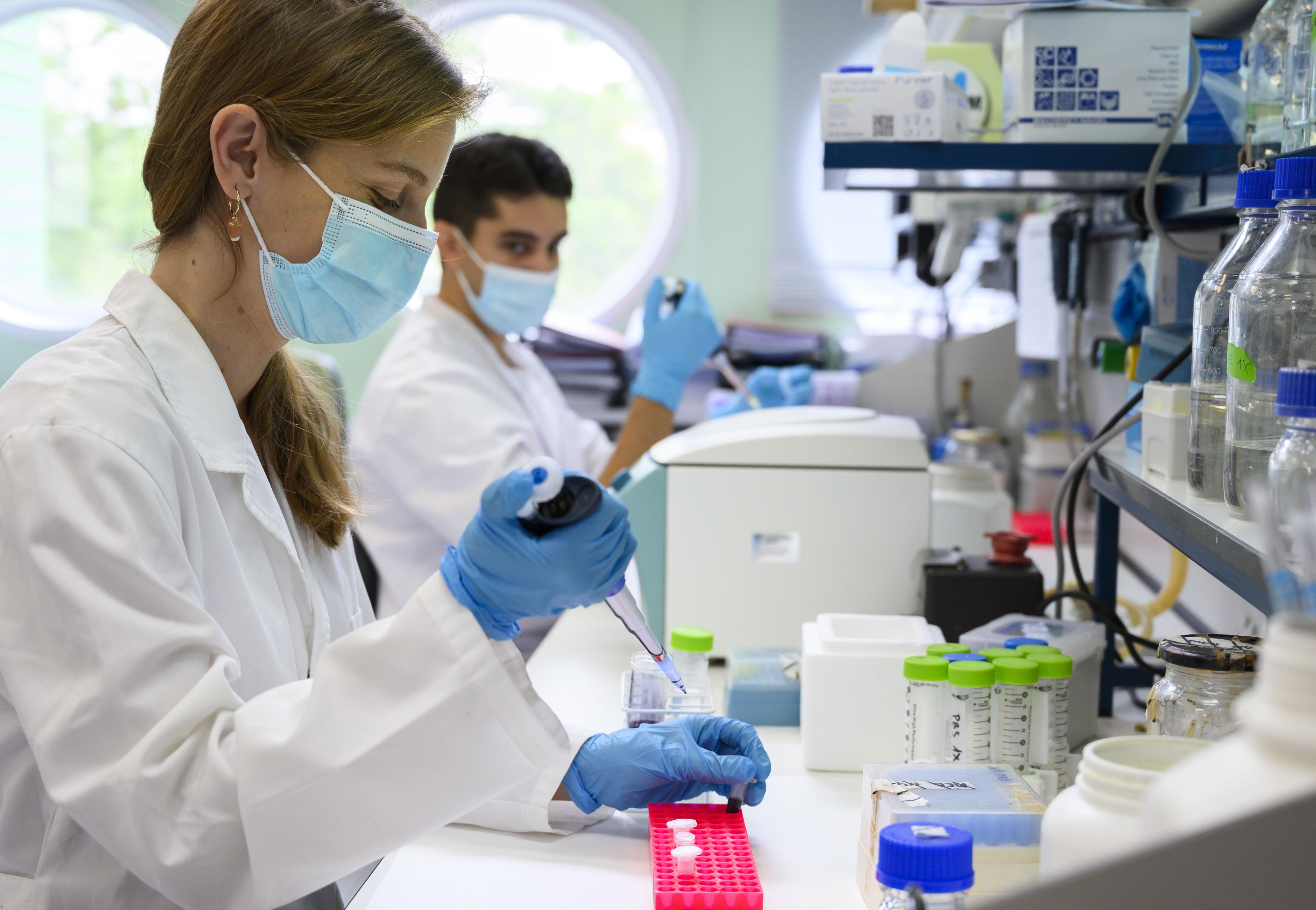 Los proyectos elegidos están centrados en la búsqueda de nuevos tratamientos frente a diversas enfermedades. / César Hernández / CSIC Comunicación