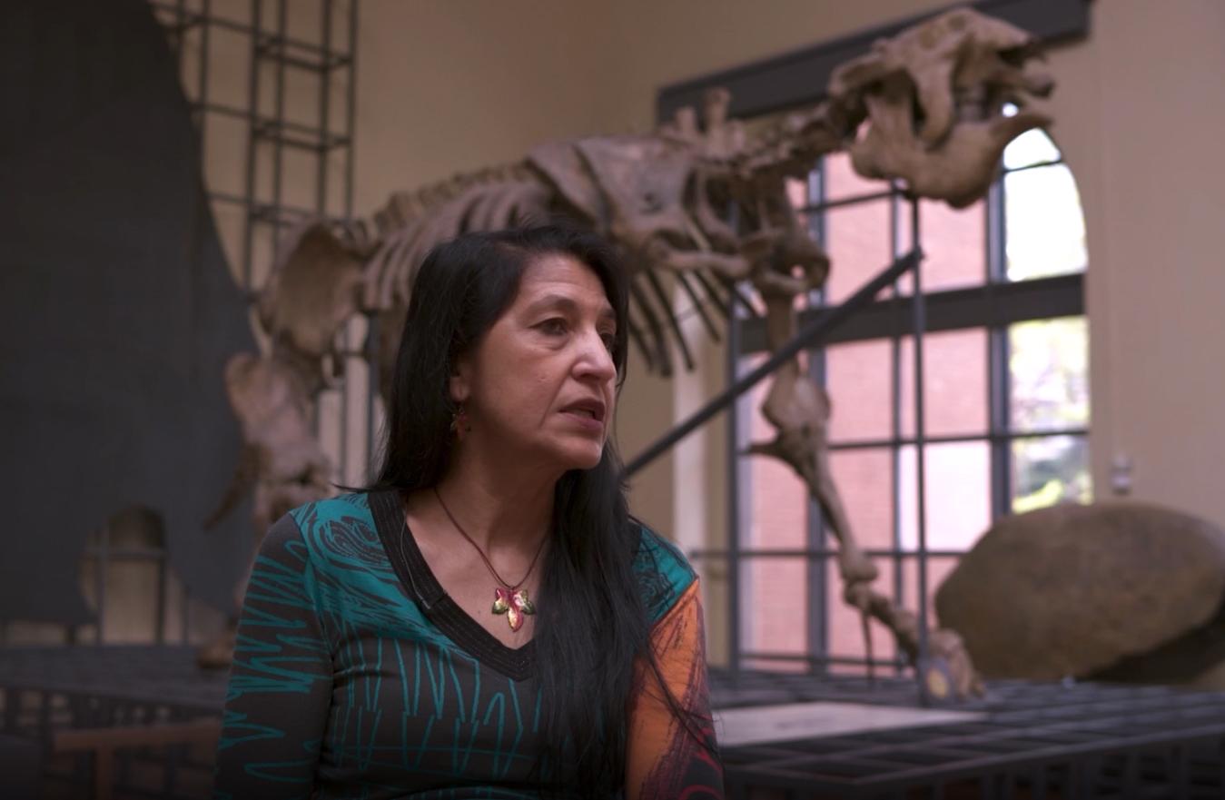 imagen de El Megaterio del Museo Nacional de Ciencias Naturales (MNCN) es uno de los objetos en los que se centra la serie.