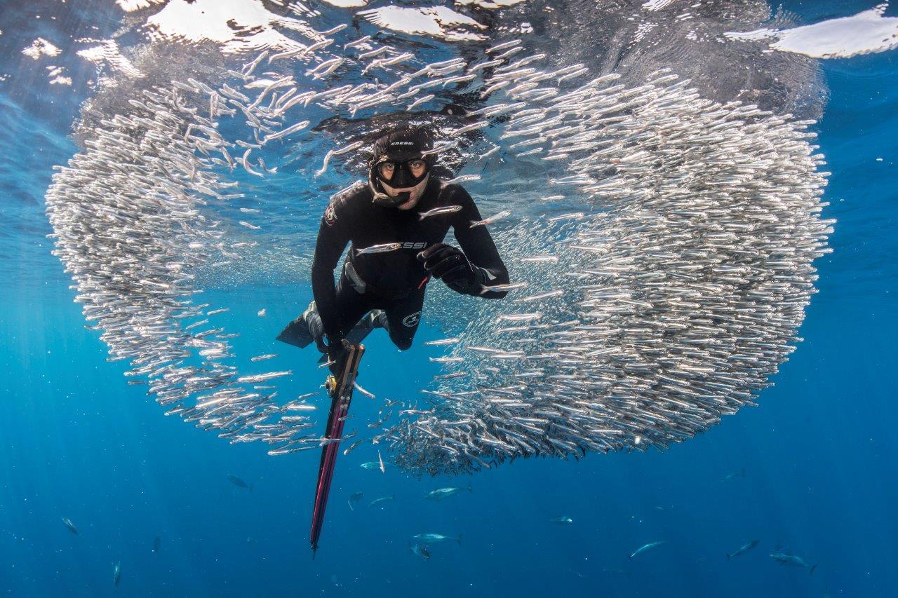 imagen de El libro aporta datos para comprender el alcance de la actividad pesquera con fines lúdicos. / CSIC