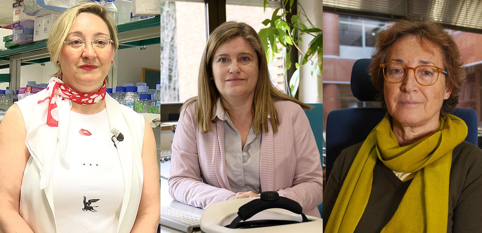 imagen de Las investigadoras del CSIC Ángela Nieto, Susana Marcos y Mercedes García-Arenal.