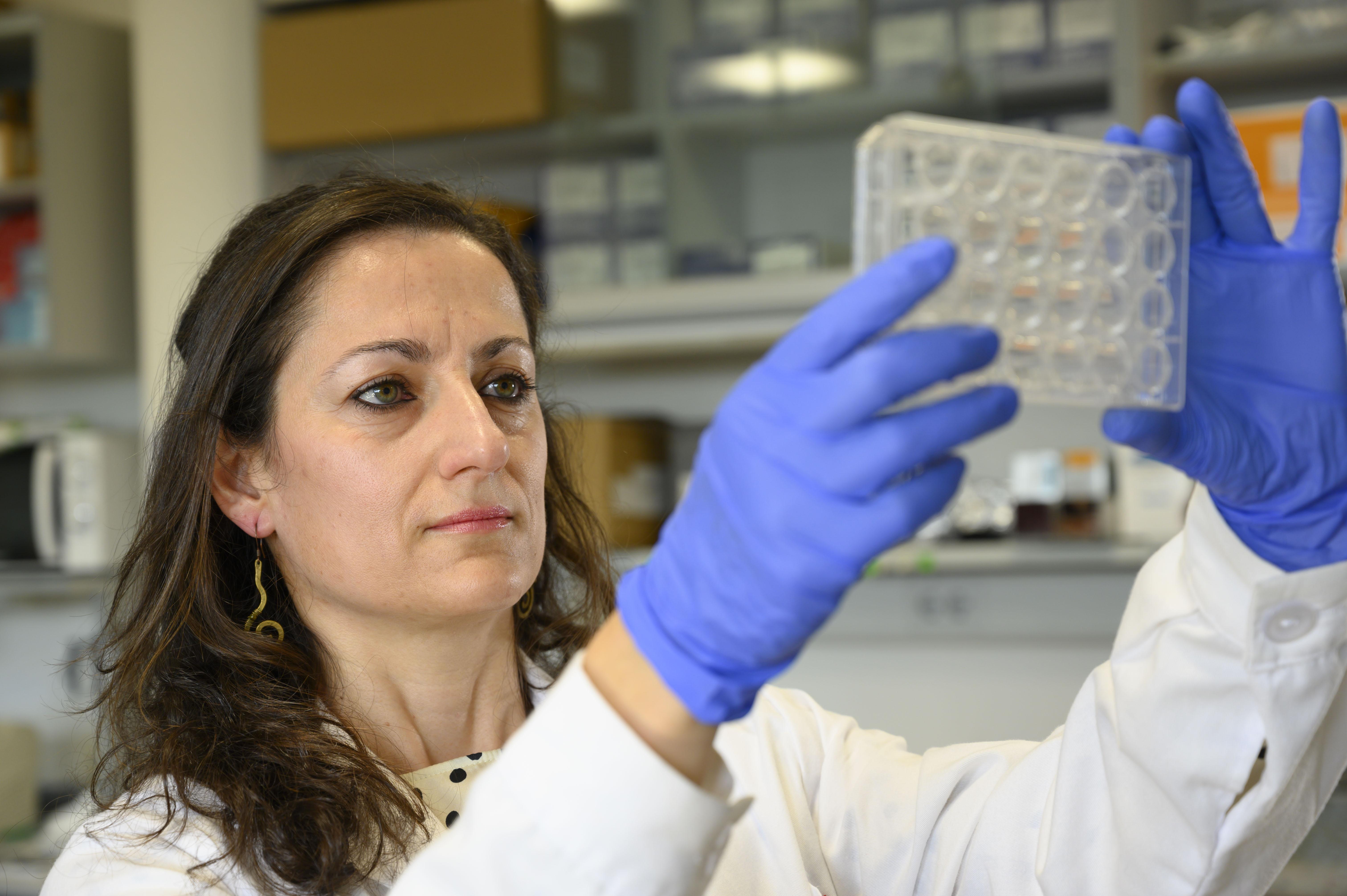 imagen de Sandra Blanco, experta en transcriptómica del cáncer en el Centro de Investigación del Cáncer. /César Hernández