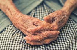El Proyecto Branyas elaborará perfiles de salud de 3.000 personas mayores./ PIXABAY