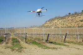 El nuevo método implica la obtención de imágenes de alta resolución a través de drones./ IAS-CSIC
