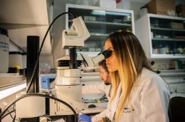 La Comisión Mujeres y Ciencia del CSIC lleva desde 2002 asesorando a la Presidencia del organismo en temas de igualdad. / LUCAS MELCÓN/ CSIC Comunicación