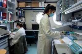 Dos investigadoras, en su laboratorio del CNB-CSIC. / César Hernández/ CSIC Comunicación