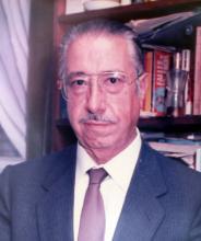 José Luís Villar Palasí