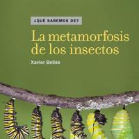 Cubierta La metamorfosis de los insectos